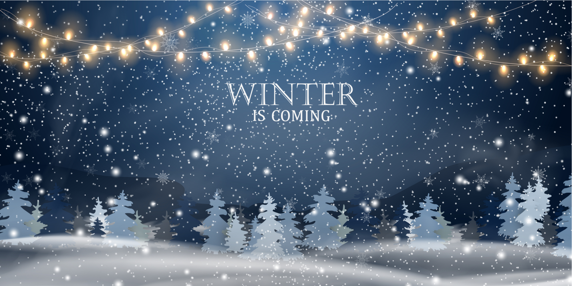 Natural Complexions Christmas Shop Winter Image